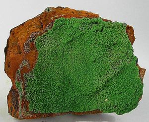 Conichalcite - Mat of conichalcite spheres on limonite base from the Ojuela Mine, Mapimí, Durango, Mexico (size: 10.4 x 8.9 x 4.2 cm)