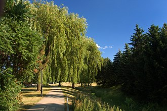 Thornhill, Ontario - Conley Park, one of the many parks found in Thornhill
