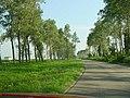 Country Road - panoramio.jpg