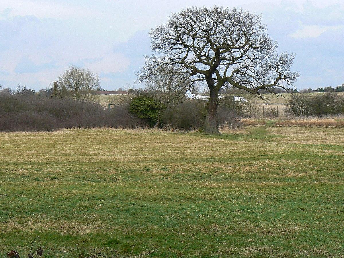 Sheldon Country Park - Wikipedia