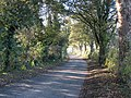 Country road, near East Tanfield - geograph.org.uk - 274611.jpg