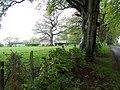 Croftamie, Shandon Farm - geograph.org.uk - 171155.jpg