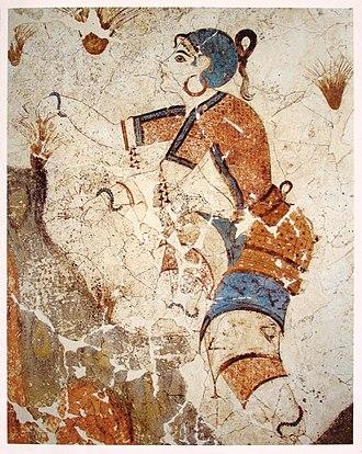 Crocus - Image: Cueilleuse de safran, fresque, Akrotiri, Grèce