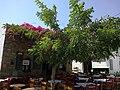 Cyclades Folegandros Hora Place Kontarini 10092014 - panoramio.jpg