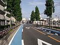 Cycling Lane 20130813.JPG