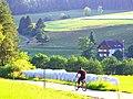 Cyclist - panoramio (2).jpg
