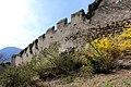 Dürnstein - Stadtmauer im Südosten (2).jpg