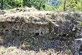 Dacian Fortress of Capalna 033.jpg