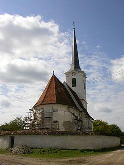 Daia Biserica reformata (4).jpg