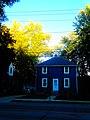 Dark Blue House - panoramio.jpg