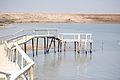 Dead Sea 005 - Aug 2011.jpg