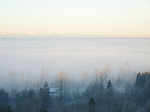 Photo of valley fog in Snohomish County, Washi...