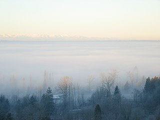 December Fog 01.jpg