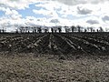 Deep ploughing - geograph.org.uk - 1774039.jpg
