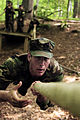 Defense.gov News Photo 090512-N-8492C-369.jpg
