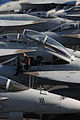 Defense.gov News Photo 100715-N-7605J-003 - U.S. Navy Airman Robert Haack prepares an F A-18F Super Hornet assigned to the Strike Fighter Squadron 154 for flight operations aboard the.jpg