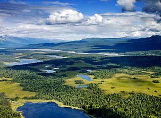 Alpine lake - Alpine lakes and forest, Denali National Park, Alaska