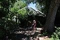 Denver Zoo 26.jpg