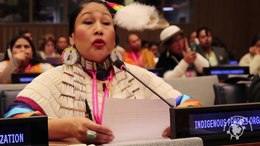 File:Descendant of Sitting Bull speaks at UN about fight against Dakota Access and State Violence.webm