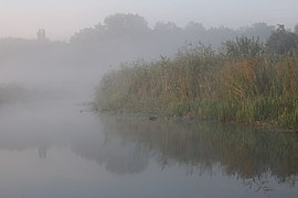 Desna river Vinn meadow 2016 G8.jpg