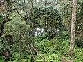 Deua River Valley.jpg