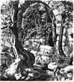 Die Gartenlaube (1861) b 493.jpg