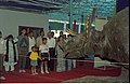 Dignitaries Watching Triceratops - Dinosaurs Alive Exhibition - Science City - Calcutta 1995-06-15 011.JPG