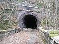 Dinas tunnel - geograph.org.uk - 353764.jpg