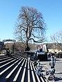 Domplatz (Erfurt) 06.jpg