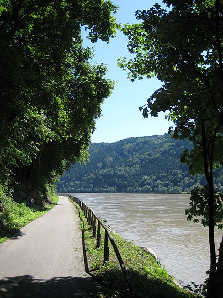 The Danube Bike Trail running along the Schlogener Schlinge Donauradweg Schloegener Schlinge - Aschach.jpg