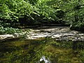 Downstream from the ford - geograph.org.uk - 801838.jpg