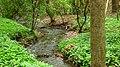 Drahanské údolí - panoramio (2).jpg