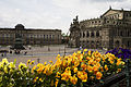 Dresden - Flowers in front of the Terrassenufer - 1949.jpg