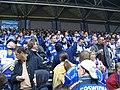 Dresden ice lions fans.jpg
