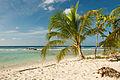 Drill Hall Beach Barbados.jpg
