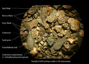 Shale - Sample of drill cuttings of shale while drilling an oil well in Louisiana, United States. Sand grain = 2 mm. in dia.