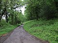 Drive to Luckyard Farm - geograph.org.uk - 455227.jpg