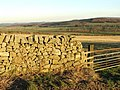 Dry Stone Wall - geograph.org.uk - 331717.jpg