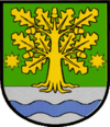 Coat of arms of Dubove
