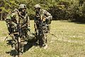 Dutch Troop Ambush 160323-M-BZ307-077.jpg
