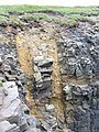 Dykes at Garthna Geo, Yesnaby - geograph.org.uk - 490020.jpg