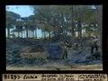 ETH-BIB-Ischia, Baugrube im Pineto der Lava dell'Arso-Dia 247-16218.tif