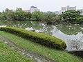 Ecological Pond of Taiwan University 台大生態池 - panoramio.jpg