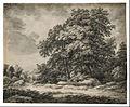 Edward Lear - Forest Landscape - Google Art Project (PwFFbW Gv8jOtQ).jpg