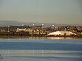 Elwick Bay-closeup1.JPG