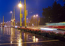 Empty rainy street.jpg