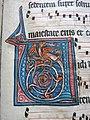 Enluminure de la lettre V dans un antiphonaire de 1260 du monastère des dominicaines d'Estavayer-le-Lac, Suisse.JPG