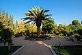 Eram Garden Shiraz باغ ارم شیراز 22.jpg