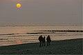 Evening walk (18521175223).jpg