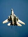 F-14A VF-33 DSCAPturn.JPEG